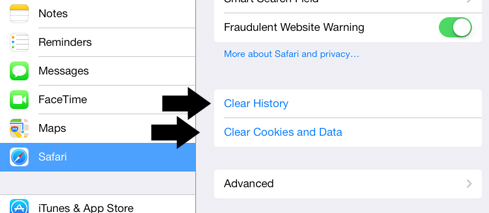 how to clear website history on ipad 2